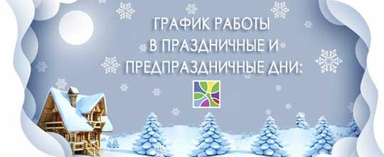 Kindergarten work on winter holidays